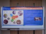 The Luava Revitalization Project by Mayuree Thawornpat